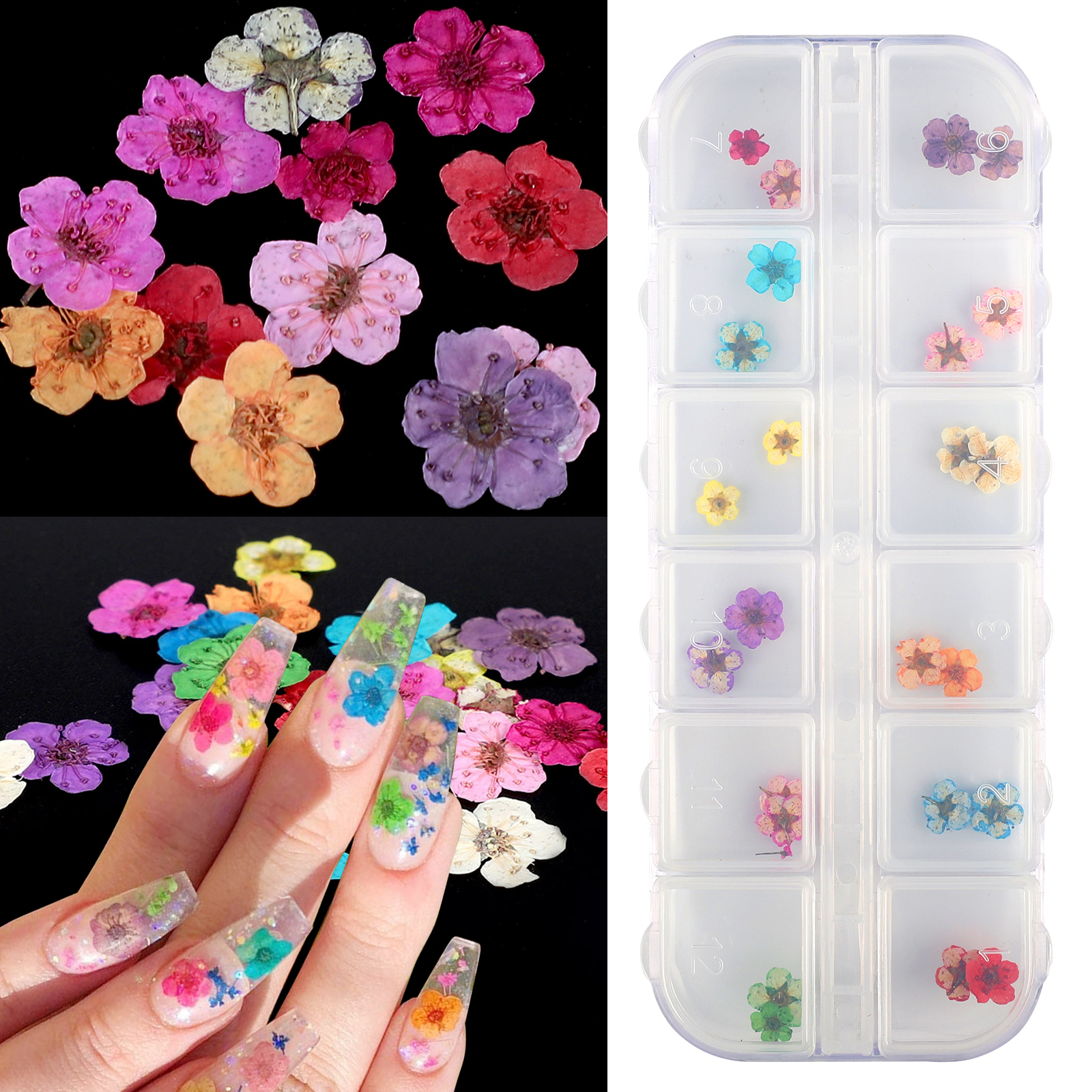 12 Colors Real Dried Flowers 3D Nail Art Decors Design DIY T